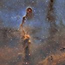 Elephant's Trunk Nebula,                                  Jeremy Scheere