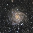 IC342,                                László Szeri