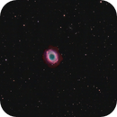 M57 - First Light Edge HD 8 and ASI2600 MM,                                John Noble