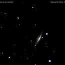 ngc 4217 galassia nei cani venatici           distanza 60 milioni  A.L.,                                Carlo Colombo