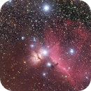 Flame and Horsehead Nebula (NGC 2024 and Barnard 33),                                Rob Calfee