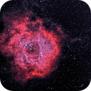 NGC 2244 - The Rosette Nebula in HOO,                                CrestwoodSky