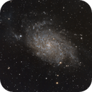 M33, Triangulum Galaxy,                                Markice Stephenson