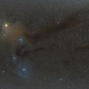 Rho Ophiuchi cloud complex,                                Martín - Tinchito333