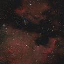 North America & Pelican Nebulae - Mosaic,                                Mark Germani