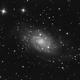 NGC 2403,                                Ryan Caputo