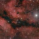 Butterfly Nebula in Cygnus,                                  sky-watcher (johny)