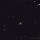 m104, Galaxie du Sombrero,                                Daniel Fournier