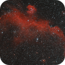 La mouette Express (IC2177),                                Greg Rodriguez