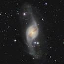 NGC 3718  & friends,                                Lars Stephan