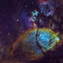 IC 1795 - The Fishhead,                                Adam Landefeld