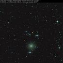 cometa 154P Brewington,                                Rolando Ligustri
