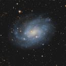 NGC 300,                                Fritz