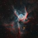 NGC 2359 - Thor's Helmet,                                Lee Borsboom