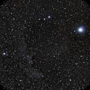 IC2118  500D 55-250mm EFS @ 200 mm ,                                Laurent