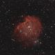 NGC 2174 - Monkey Head Nebula,                                  Wolfgang Zimmermann