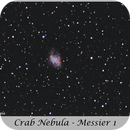 Crab Nebula,                                Carlos A. Archila