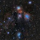 NGC2170,                                John Bozeman
