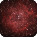 Caldwell C49 & C50 - NGC2237-9,NGC2244, 2246 - Rosette Nebula and Open Cluster in Monoceros,                                Geoff Scott