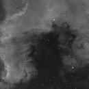 NGC7000 H-Alpha,                                Sergio Alessandrelli