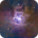 "NGC 7023 ""The Iris Nebula."",                                Pat Rodgers"