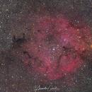 IC1396 Komplex Wide,                                Alexander Grasel