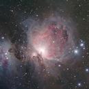 M42, la grande nébuleuse d'Orion,                                Cédric Thomas