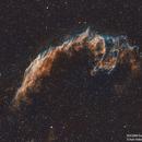 NGC6960 - Eastern Veil Nebula,                                Awni Hafedh