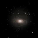 M81 Bode's Galaxy #2,                                Molly Wakeling