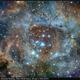 NGC 2237, Rosette Nebula, SHO+HGB Stars, 30 Jan - 1 Feb 2019,                                David Dearden