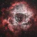 Rosette Nebula in HOO,                                Mike H