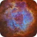 Rosette Nebula NGC 2237,                                William Burns