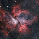 NGC 3372,                                Michael Völker
