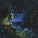 NGC 7380 Wizard Nebula,                                Sven Eklund