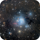 NGC 7129 LHRGB - A Reflection Nebula in Cepheus,                                Eric Coles (coles44)