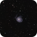M101 Pinwheel Galaxy,                                Allen Koenig