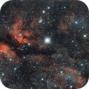 IC1318 with Sadr,                                  oystein
