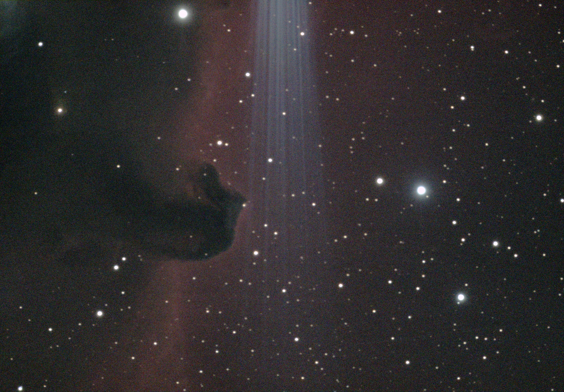 The Horsehead Nebula - B33,                                Corey Rueckheim