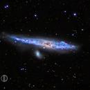 Whale galaxy,                                David Dvali