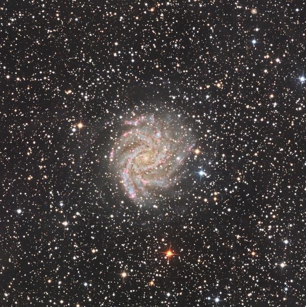 NGC6946,                                  Frankw