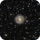 NGC 2217: The Swirling Galaxy,                                Russ Carpenter