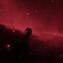 B33 Horsehead Nebula in Ha,                                Richard Pattie