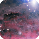 Inside Orion nebula,                                Daniele Gasparri