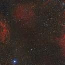 Spaghetti & Flaming Star Mosaic,                                Dennis Sprinkle