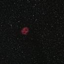 Cocoon Nebula,                                Jirair Afarian
