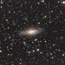 NGC 7331 (Deer Lick Group),                                Doug_Bock