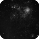 Tarantula Nebula (30 Doradus),                                Thorsten