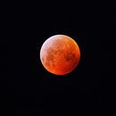 Blood moon 2019,                                Bradley vanderklaauw