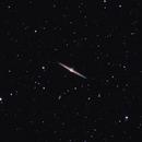 Needle Galaxy (NGC 4565),                                Johnny Qiu