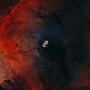 NGC6164 and NGC6165 - The Dragon's Egg,                                Steve de Lisle